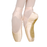 Grishko Pointe Shoes 2007